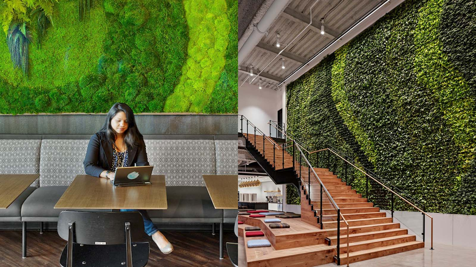 7 Stunning Offices That Bring The Great Outdoors Inside