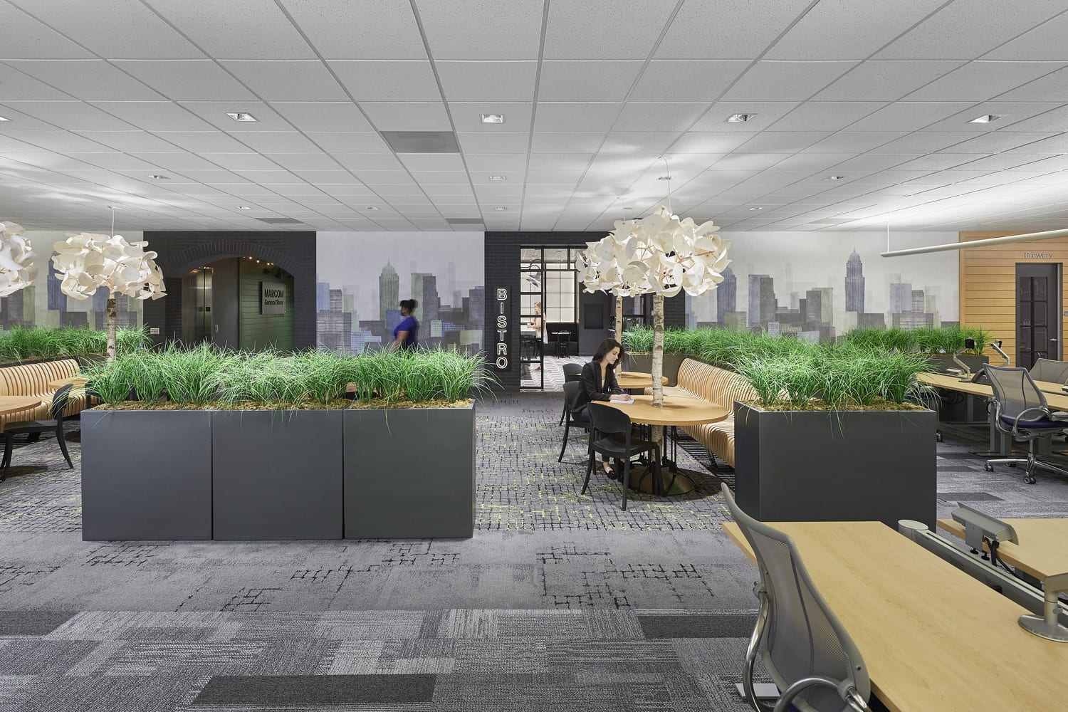 Workplace lighting design in Raleigh office